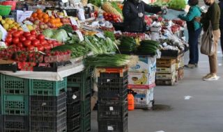 90 млн. лв. помощи за производители на плодове и зеленчуци