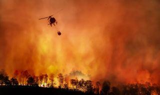 Антоанета Йотова пред ФАКТИ: 2020 г. е една от трите най-горещи години, откакто се извършват наблюдения