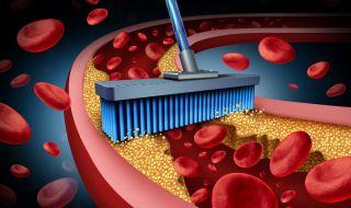 Тези храни разреждат кръвта
