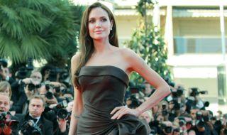 Анджелина Джоли ще е режисьор на филм за военен фотограф