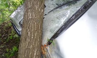 Удар в крайпътно дърво отне живота на шофьор