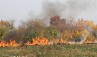 Мъж подпали сухи треви и загина в огъня