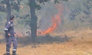 Горя пожар в защитената територия