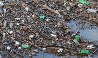Поредно нерегламентирано сметище събира тонове боклуци във Варна