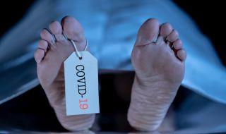 Експерти посочиха факторите, увеличаващи риска от смърт при COVID-19 - 1