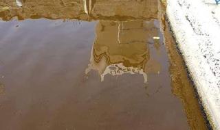 Прокуратата започна проверки за фекалиите във Варненското езеро