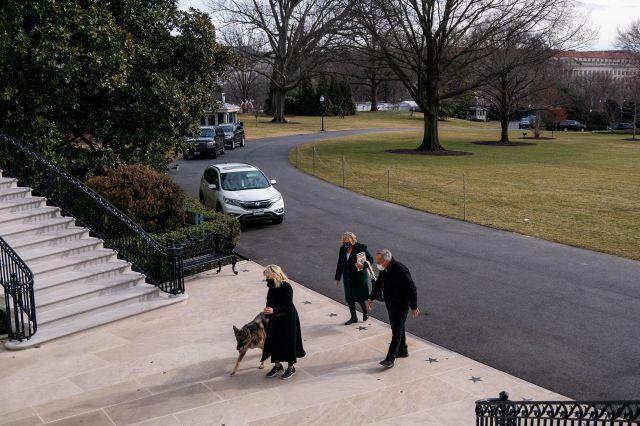 Немските овчарки на Байдън се нанесоха в Белия дом (СНИМКИ)