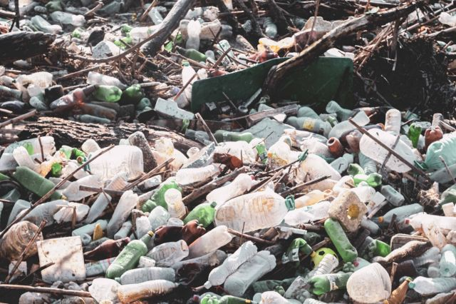 За екокатастрофата в река Искър - ''Грийнпийс'' - България пред ФАКТИ