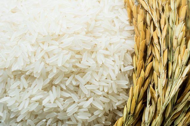 Вреден или полезен е белият ориз