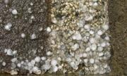 Незапомнена градушка в Каспичан запуши канализацията