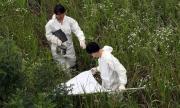 Китай съобщи за бум на нов смъртоносен вирус