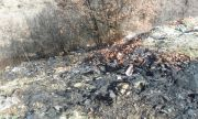 Угасиха пожар в нерегламентирано сметище край Благоевград