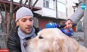 Мъж едва спаси себе си и кучето си от зъбите на питбул