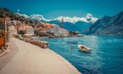 Балканска държава обяви, че всички заразени с коронавирус вече са излекувани