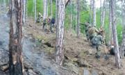 Овладяха пожара в Хисарско, спасиха стотици декари гора