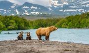 Екокатастрофа в Русия