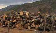 Кукер загина с миниван, натоварен с дърва