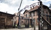 Разтърсващата история на Аушвиц