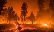 Екстремни жеги, засушавания и наводнения: ситуацията с климата е драматична