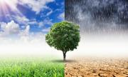 Невиждана от 100 години суша удари Румъния