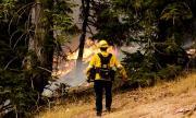 Увеличават се жертвите на пожарите в САЩ