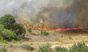 Огънят край Сандански погълна група гасачи