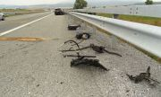 Катастрофа с три коли затруднява трафика между Монтана и Враца