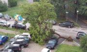 Над 60 литра на квадрат са се излели в София