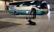 Гърция сваля цените в транспорта