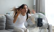 Как да оцелеете в жегата без климатик