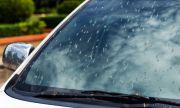 Направи си сам: Препарат за почистване на ветроупорното стъкло от насекоми