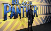 Черната пантера се завръща на... (ВИДЕО)