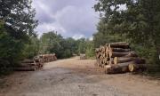 Сушата и безводието ще са най-страшното бедствие в България
