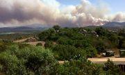 Остров Сардиния е обхванат от горски пожари