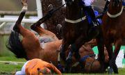Състезателка по конен спорт бе откарана в болница с хеликоптер след ужасяващо падане