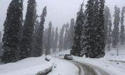 Сибирски студ: - 25,2 градуса в Трън