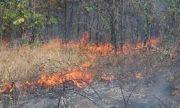 Потушен е пожарът край Оризари, овладян е огънят в Централен Балкан