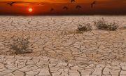 Глобално затопляне! Над половината от реките по света пресъхват периодично заради климата и човека