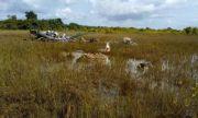 Загиналите в катастрофата с хеликоптер в Кот д'Ивоар българи са били военни инструктори на мисия