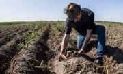 Изтича важен срок за земеделците