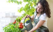 Как да си направите пищна пролетна градина на балкона