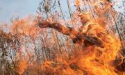 Бразилия призна: Не можем да спрем огъня (СНИМКИ)