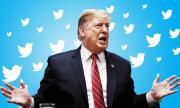 Хакер обяви паролата на Тръмп в Twitter