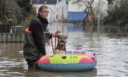 Потопът в Германия: как са спасявани коне, кучета и котки