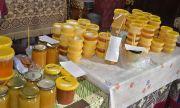 Нулева година за пчеларите