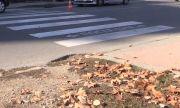 Блъснаха две 11-годишни момиченца на пешеходна в Бургас
