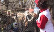 БЧК ще раздава храни от първа необходимост и на хора под карантина