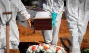 Бразилският щам е три пъти по-смъртоносен за младите