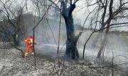 Стотици пожари бушуват в Италия