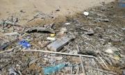 Годишно Дунав вкарва по 11 млрд. броя пластмасови отпадъци в Черно море